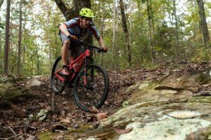 Rock/Creek Mountain Bike Rentals