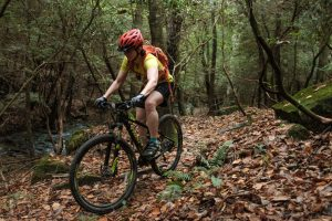 Rock/Creek Mountain Bike Rentals